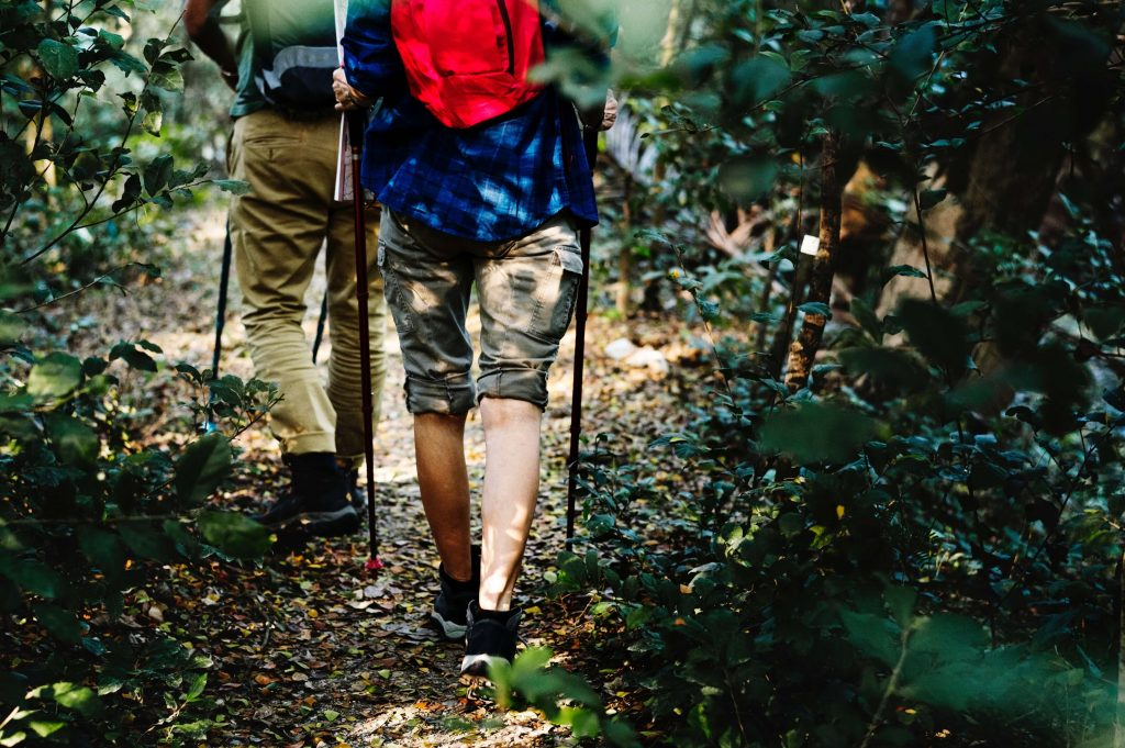 Best Hunting Backpack for the Money in 2018 Reviews
