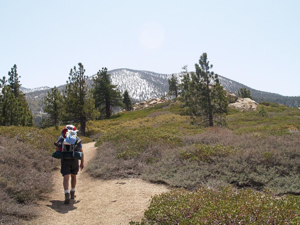 San Bernardino Peak photo