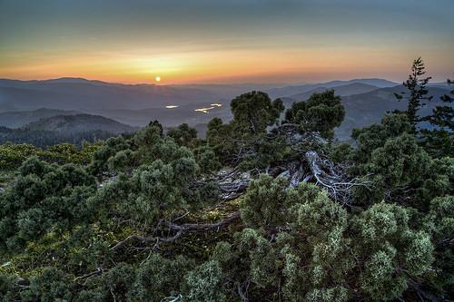 Siskiyou National Forest photo