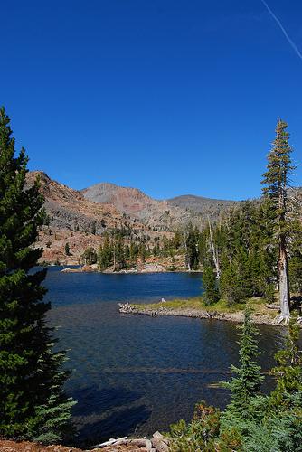 Susie Lake photo