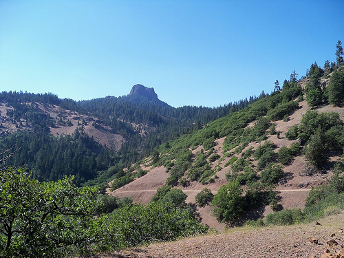 Siskiyou National Forest photo